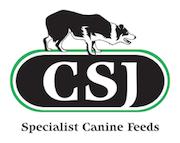 CSJ mid new logo