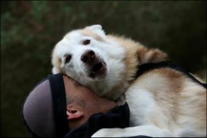 karl cuddle