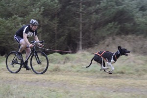 Danny bike