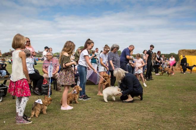 Calverhall Dog Show 03
