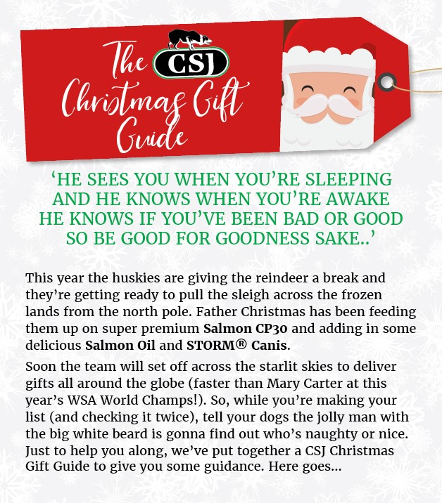 CSJ Christmas Gift Guide_FB_V2_SAMPLE 1