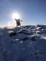 Kimmy Stevenson #pushyourmush Bear having some free running time, climbing the hills in the snow 💛🧡🐾