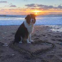 凯瑟琳·卡普娜·卡普娜——欢迎来到我的美丽的海滩,可爱的可爱的小女孩