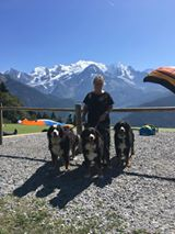 Carol Dunnill - Me and my beautiful Bernese Mountain Dogs.