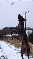 Julie Tulleth #pushyourmush Oakley snowball catching
