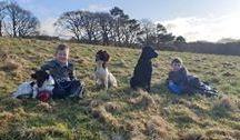 雷蒙德·哈尔曼——我的孩子和他的狗在一起。,