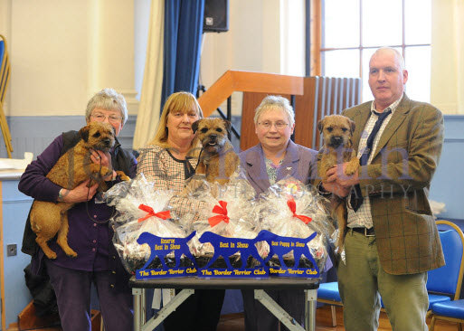 The Border Terrier Club Open Show on Saturday 22 February 2020