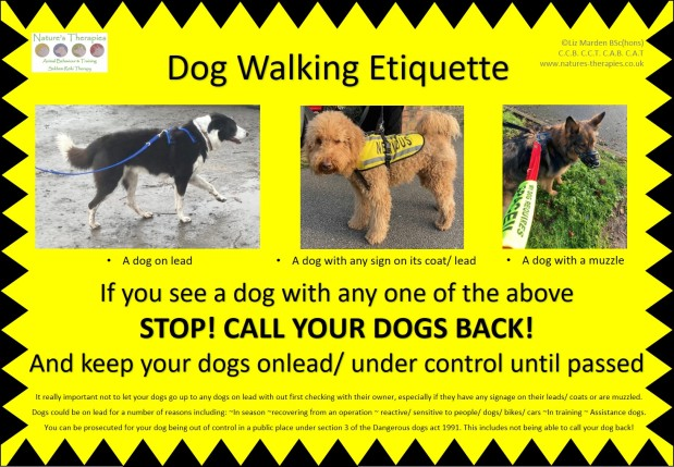 Dog walking etiquette – spreading awareness