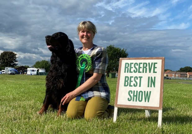 Congratulations on achieving RBiS with Hector at the Gorden Setter Association Shows – sponsored byCSJ